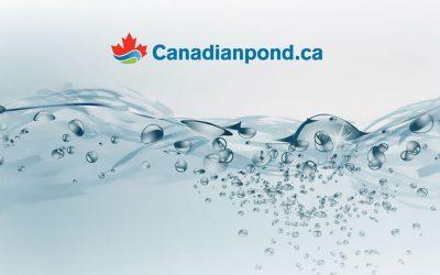 Pages de destination pour un fournisseur de produits de gestion aquatique